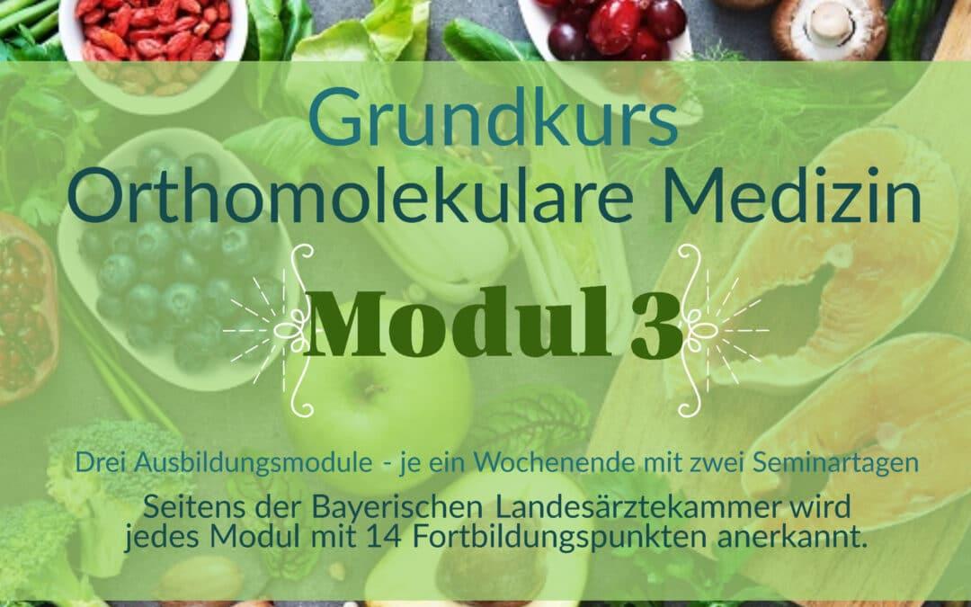 Grundkurs Orthomolekulare Medizin – Modul III