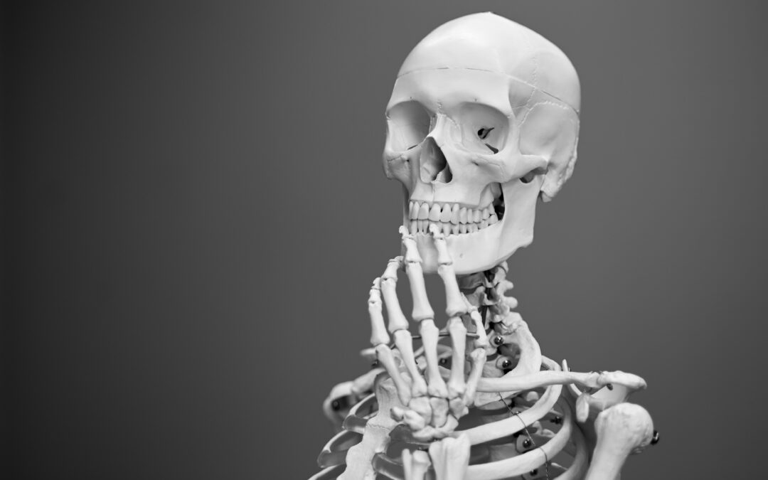 kostenloses LIVE Online Seminar für Endverbraucher – Thema: Osteoporose